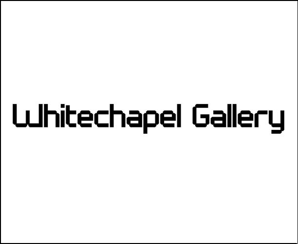 whitechapel gallery Survey Visualisation